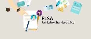 fair labor standards actsmall